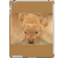 Snuggled Yellow Puppy iPad Case/Skin