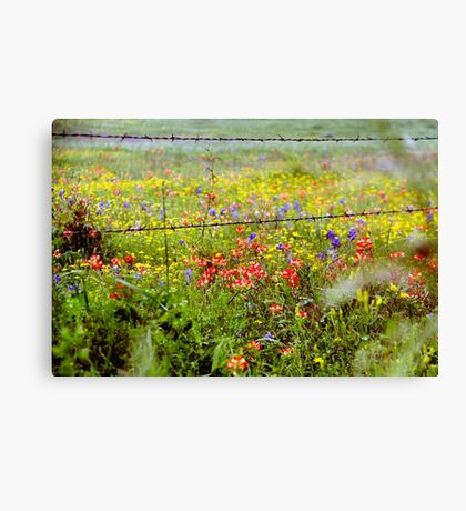 Texas Spring Canvas Print