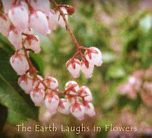Spring by Catherine Mardix