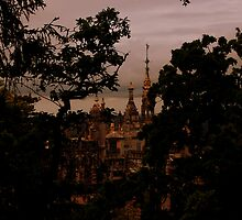 Your Castle, Cinderella...the Palace at Quinta da Regaleira, Portugal. by Wayne Cook