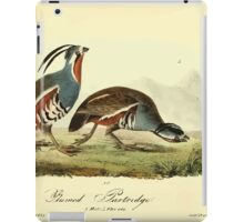 James Audubon Vector Rebuild - The Birds of America - From Drawings Made in the United States and Their Territories V 1-7 1840 - Ground Partridge iPad Case/Skin