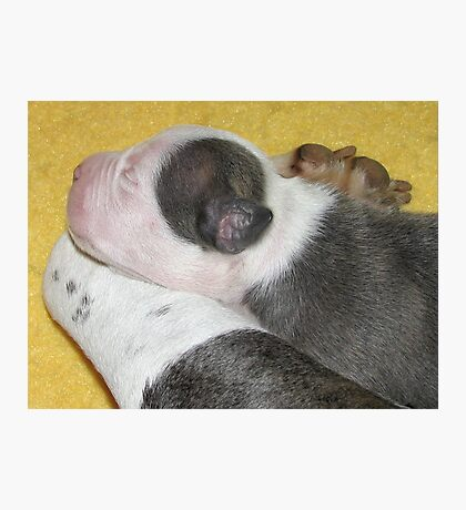 Asleep With Mom Photographic Print