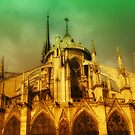 Paris - Notre-Dame cathedral by jean-louis bouzou
