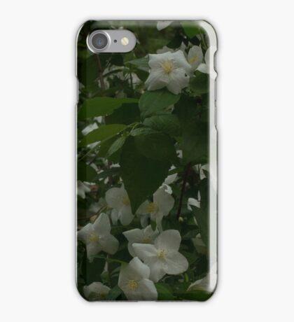 White Flowers at Zilker Gardens iPhone Case/Skin