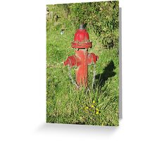 Red Hydrant and Flowers Greeting Card