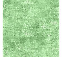 Pistachio Oil Painting Color Accent Photographic Print