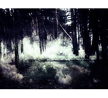 Night Forest Photographic Print