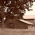 Old Mule Barn by WTBird