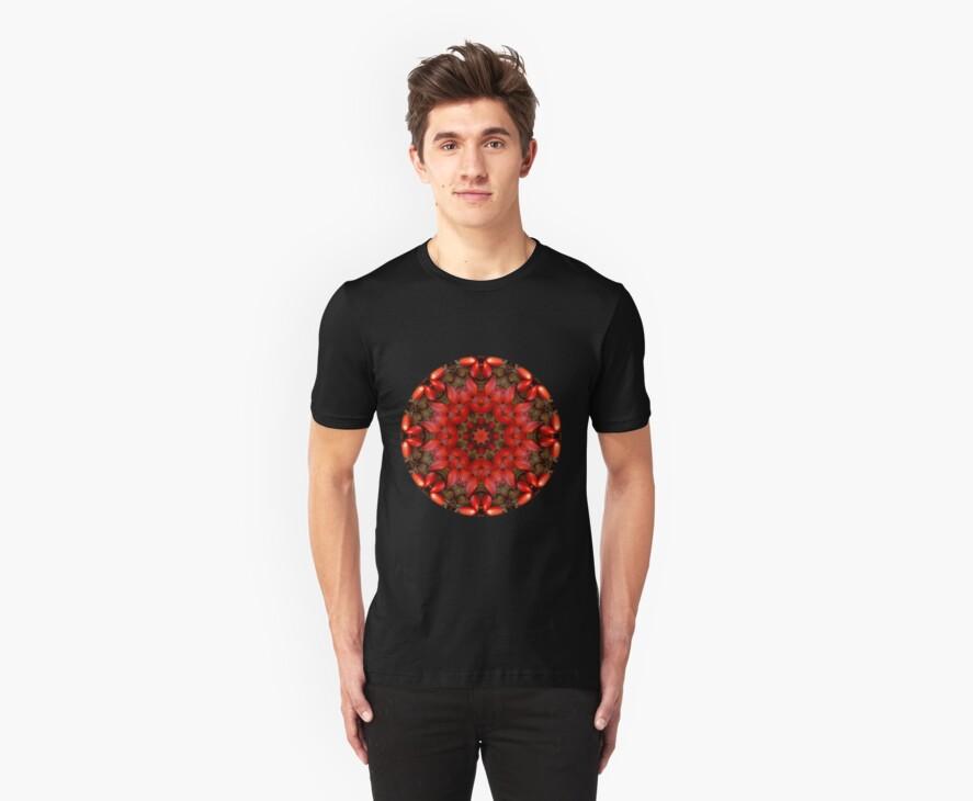 Red Kaleidoscope #1 by Lyle Hatch