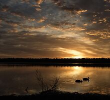 Wee Man of the Lake by GerryMac