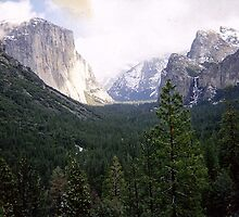 Yosemite Valley by Sandra Essary