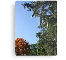 Autumn Over The Great Lakes Metal Print