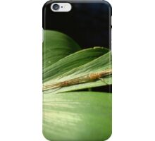 Long Jaw Orb Weaver on Pickerel Weed iPhone Case/Skin