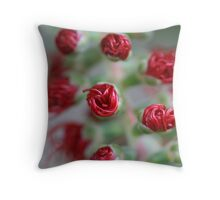 All rolled up Throw Pillow