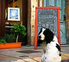 """""""Le Petit Chien"""" - Lyon, France by Sophie Gonin"""