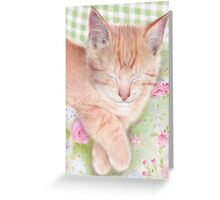 Shabby Chic Cat Greeting Card