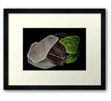 Broken Treasure Framed Print