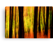 In the forest #2 Canvas Print