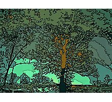 Tree in a puddle Photographic Print