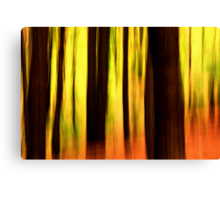 In the forest #1 Canvas Print