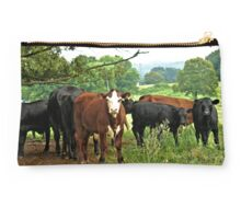 """""""...Goin'a do what, Cowboy? You're in Cowtown, Now!""""... prints and products Studio Pouch"""