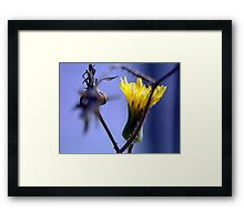 ©NS In Between IA. Framed Print