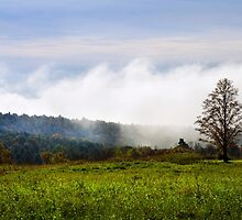 Foggy Hilltop Sunrise Landscape by Christina Rollo