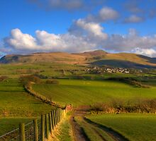 Fields And Fells 2 by Nigel Donald