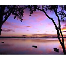 Purple Boat Gum Sunset Photographic Print