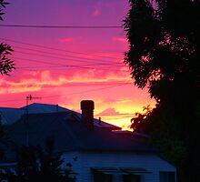 Evening sun by burningdesire