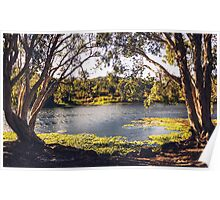 Ross River in Townsville Poster