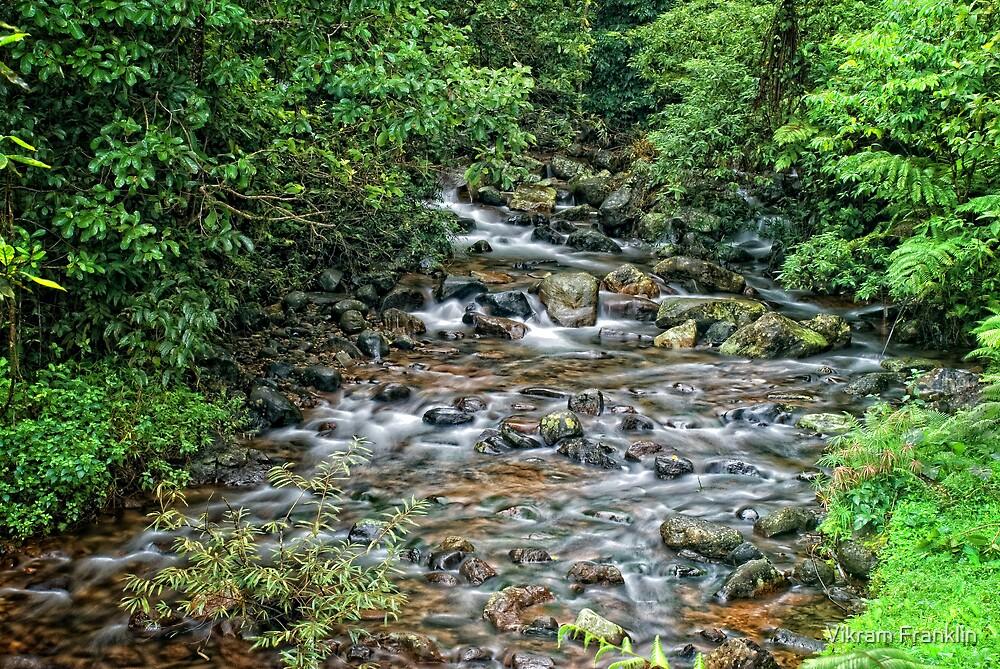 River rocks by Vikram Franklin