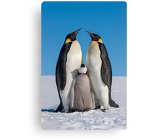 Emperor Penguins and Chick - Snow Hill Island Canvas Print