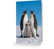 Emperor Penguins and Chick - Snow Hill Island Greeting Card