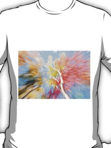 Birch trees in fall, Maine, Vibrant nature abstract. T-Shirt
