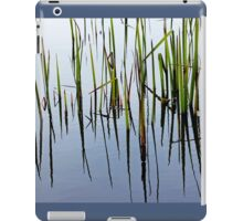 Life In The Shallows iPad Case/Skin