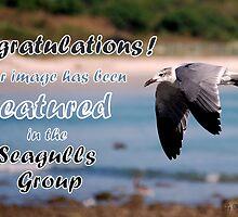 Seagulls Group Challenge #2 by LjMaxx