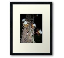 """""""Queen of the Night"""" Framed Print"""