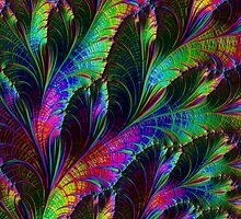 Rainbow Leaves by Steve Purnell