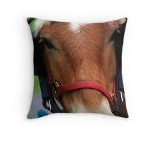 The Face of a Horse Throw Pillow