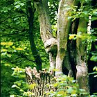 Eagle Sculpture, Ashton Wood, Bristol  by David Sandilands