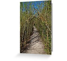 The Willow Walk Greeting Card