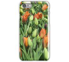 Tulip Patch iPhone Case/Skin