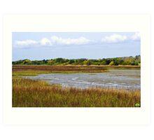 Marshland in Color Art Print
