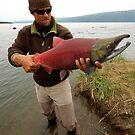 Sockeye Salmon by Gina Ruttle  (Whalegeek)