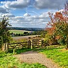 North Downs Way 1 by gollum1985