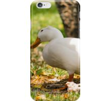 Wonderin' Pekin iPhone Case/Skin