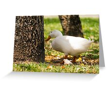 Wonderin' Pekin Greeting Card