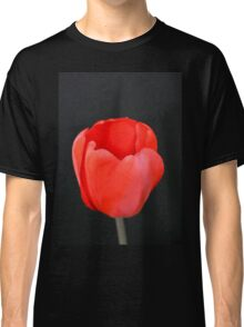 Red Beauty Classic T-Shirt