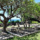 Keawala'i Graveyard by Teresa Zieba